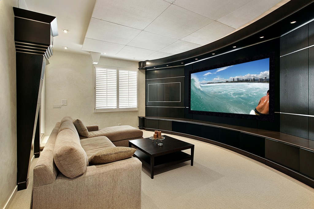 Reference Home theater with pic